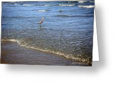 Being One With The Gulf - Detached Greeting Card