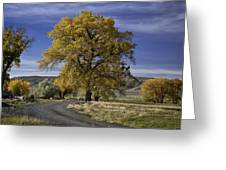 Belfry Fall Landscape 5 Greeting Card