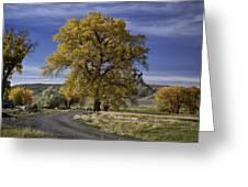 Belfry Fall Landscape 5 Greeting Card