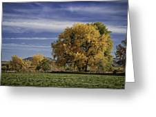 Belfry Fall Landscape 7 Greeting Card