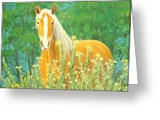 Belgian Draft Horse Greeting Card