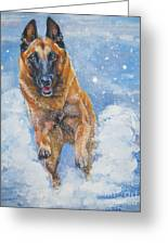 Belgian Malinois In Snow Greeting Card