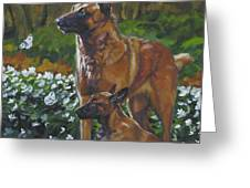 Belgian Malinois With Pup Greeting Card