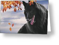 Belgian Shepherd With Autumn Leaves 2 Greeting Card