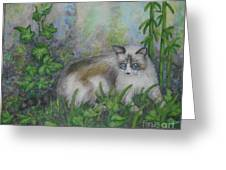 Bella With Ivy And Bamboo Greeting Card