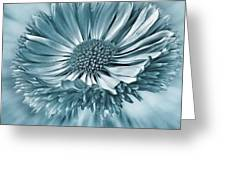 Bellis In Cyan  #flower #flowers Greeting Card