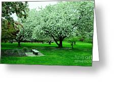 Bench Among.the Blossoms Greeting Card
