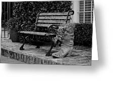 Bench And Boot 1 Greeting Card by Michael Colgate