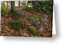 Bench In Fall Greeting Card