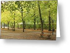 Benches In Wurzburg Greeting Card