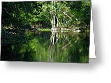 Bend Of The Ocklawaha River Greeting Card