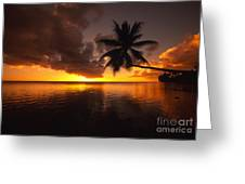 Bending Palm Greeting Card