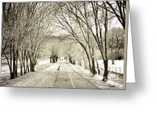 Beneath The Branches Greeting Card