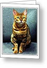 Bengal Cat Digital Oil Pastel Greeting Card
