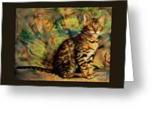 Bengal Kitten Greeting Card