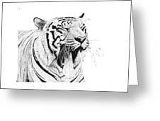 Bengala Tiger Greeting Card