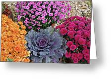 Bennington Farm 8273 Greeting Card