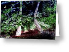 Bent Fir Tree Greeting Card