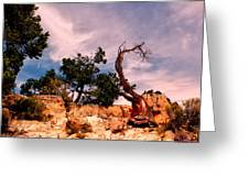 Bent The Grand Canyon Greeting Card