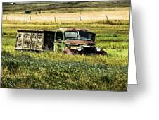 Bereft In A Field Greeting Card