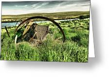 Bereft On The Grasslands T Greeting Card