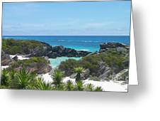 Bermuda Bliss Greeting Card