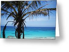 Bermuda Blues Greeting Card