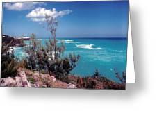 Bermuda Summer Shore Greeting Card