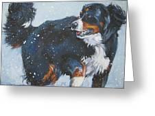 Bernese Mountain Dog In Drift Greeting Card