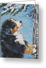 bernese Mountain Dog puppy and nuthatch Greeting Card