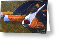 Bernese Mtn Dog On The Deck Greeting Card