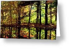 Bernharts Dam Fall 94-006 Greeting Card
