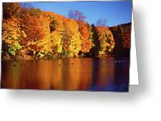 Bernharts Dam Fall 008 Greeting Card