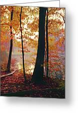Bernharts Dam Fall 031 Greeting Card