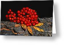 Berries And Bark Greeting Card