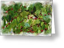 Berries And Leaves 51 Greeting Card