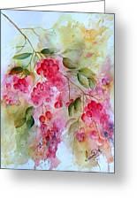 Berries Galore Greeting Card