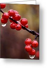 Berries With Water Droplets Greeting Card