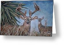 Berry Buck And Doe Greeting Card