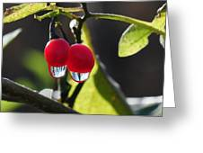 Berry Droplets Greeting Card