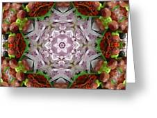 Berry Kaleidoscope Greeting Card