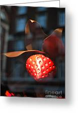 Berry Reflected Greeting Card