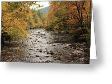 Beside Still Waters Greeting Card