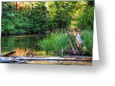 Beside The River Greeting Card