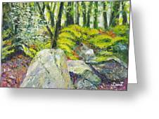 Beside The Routeburn Greeting Card