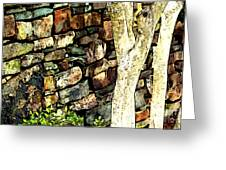 Beside The Wall Greeting Card