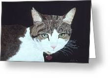 Best Cat Greeting Card