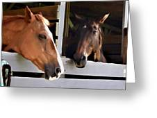 Best Friends Horse Chat Greeting Card