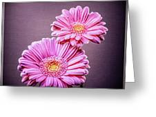 Best Friends Pink Greeting Card