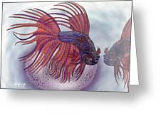 Betta Fish Greeting Card